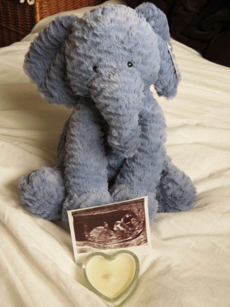 being pregnant teddy and scan pic